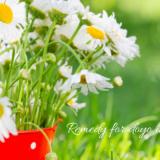 春の土用のセルフケア